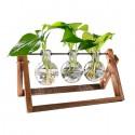 Soporte hidropónico para plantas Hogar